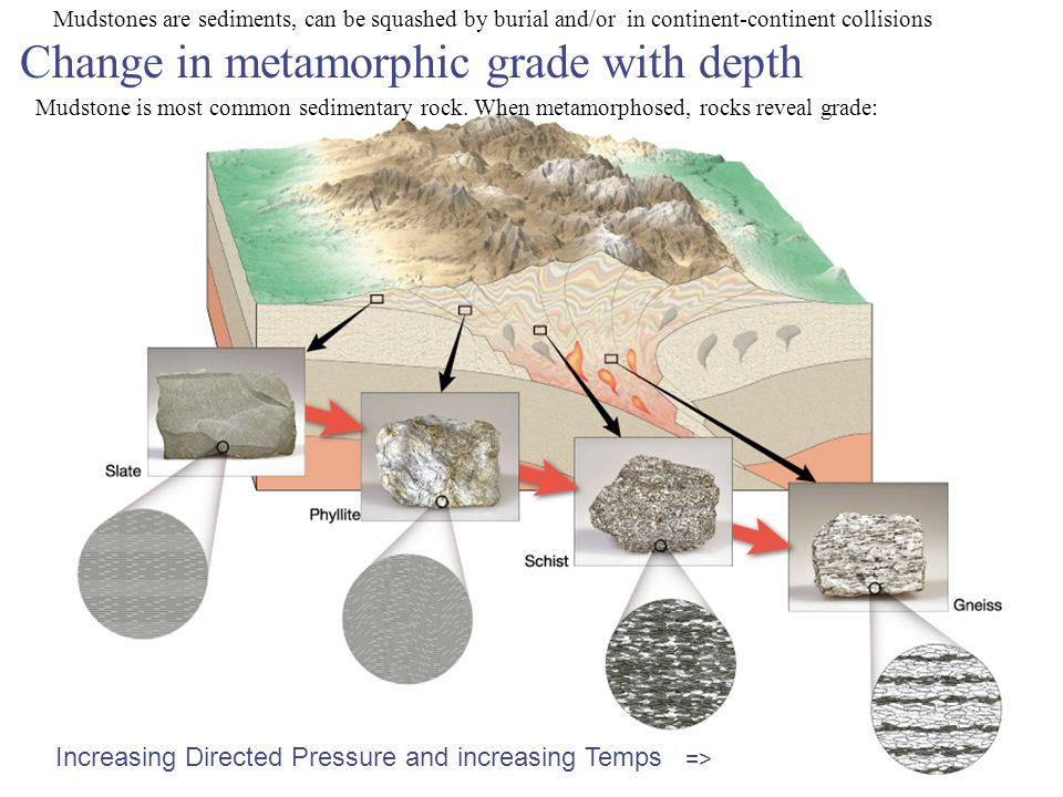 Change in metamorphic grade with depth Increasing Directed Pressure and increasing Temps => Mudstones are sediments, can be squashed by burial and/or