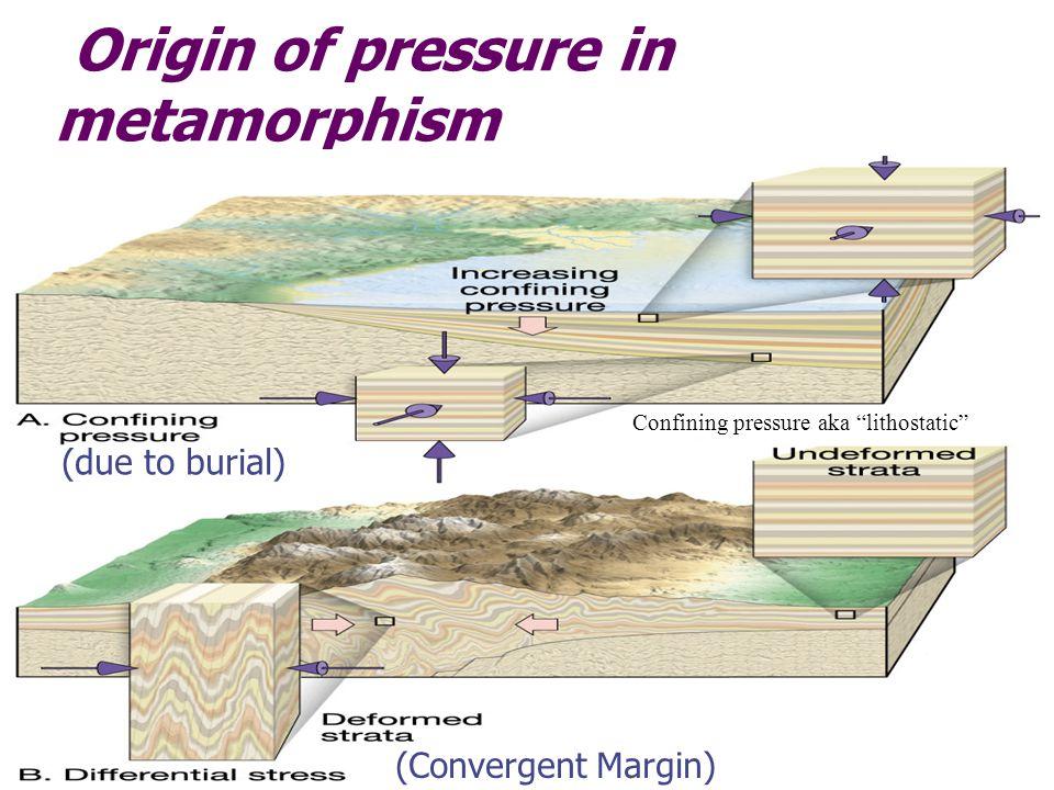 Origin of pressure in metamorphism (due to burial) (Convergent Margin) Confining pressure aka lithostatic