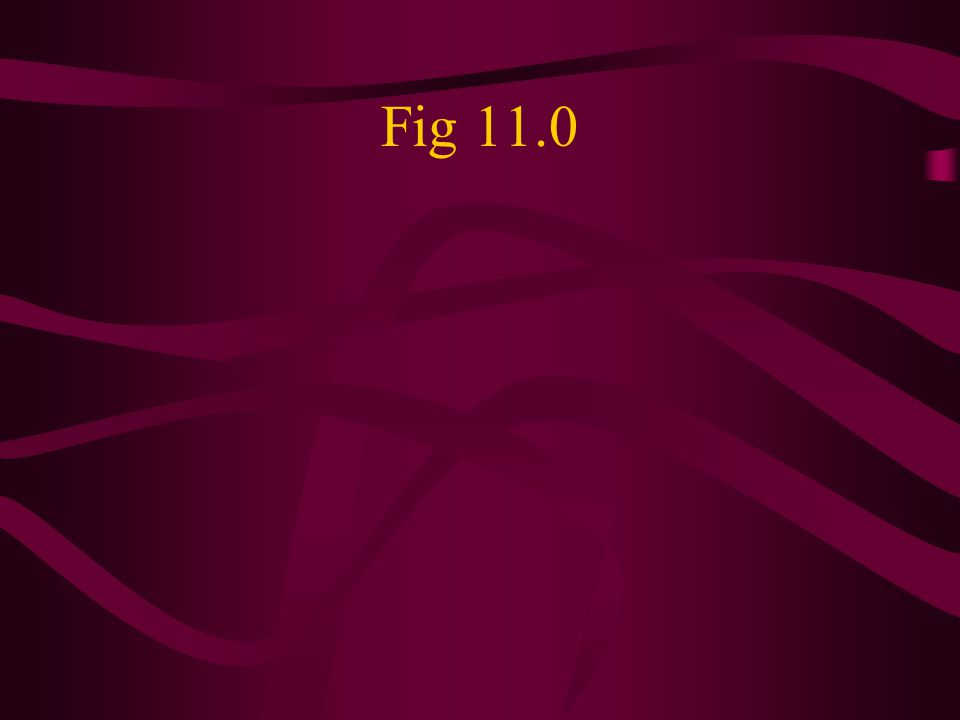 Fig 11.0