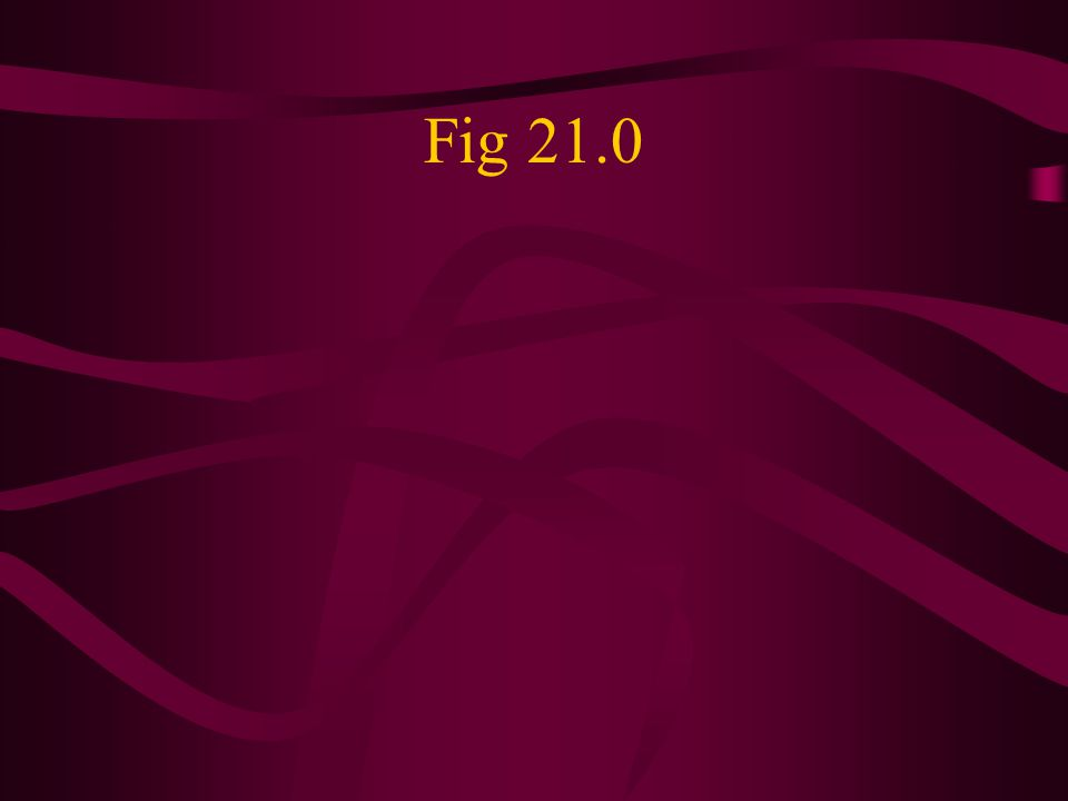 Fig 21.0