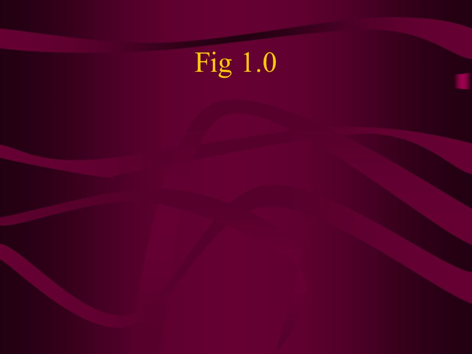 Fig 1.0