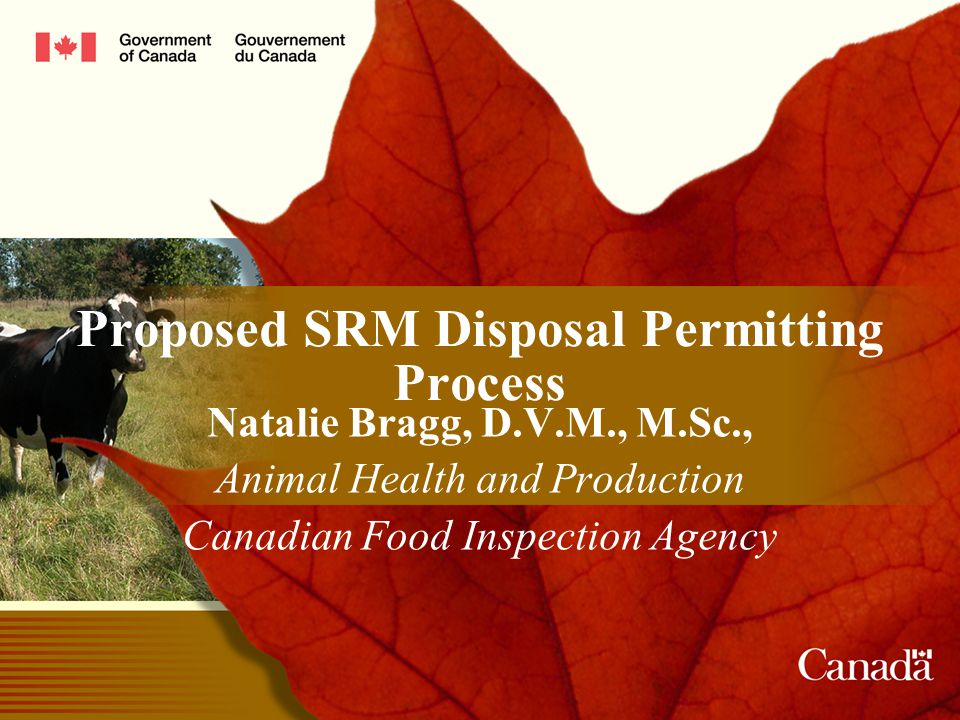 2 SRM Disposal Intent of regulatory enhancements ► minimize the risk of BSE transmission associated with the adulteration or cross- contamination of ruminant feeds during manufacture and distribution and misuse of feed on farm − removing SRM from feed and fertilizer supplies − controlling the disposal of SRMs