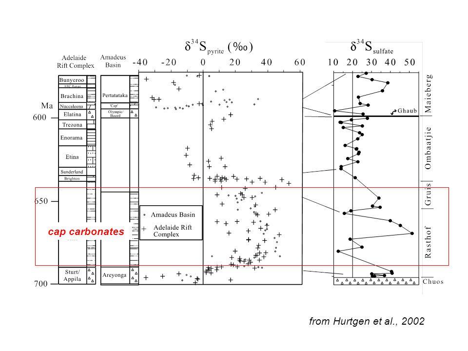 from Hurtgen et al., 2002 cap carbonates