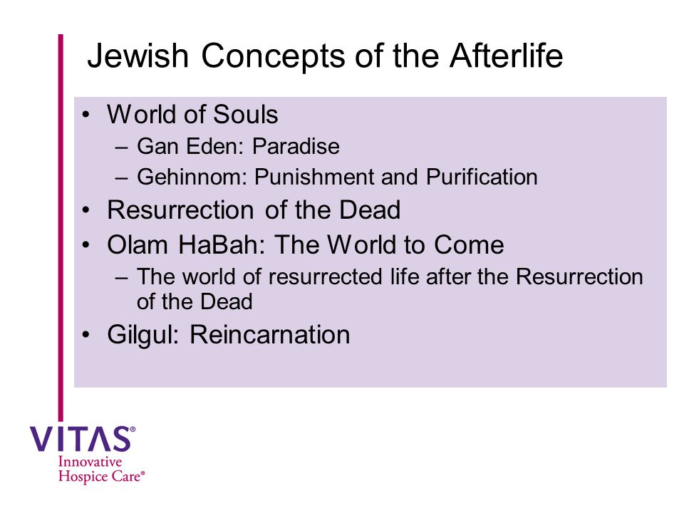 Jewish Concepts of the Afterlife World of Souls –Gan Eden: Paradise –Gehinnom: Punishment and Purification Resurrection of the Dead Olam HaBah: The Wo
