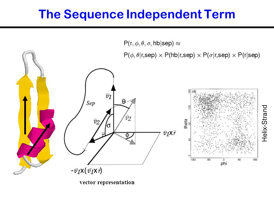 The Sequence Independent Term vector representation