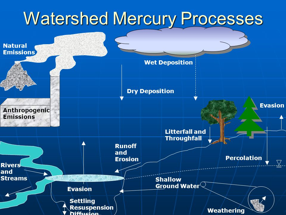 Anthropogenic Emissions Wet Deposition Dry Deposition Evasion Watershed Mercury Processes Natural Emissions Percolation Shallow Ground Water Settling