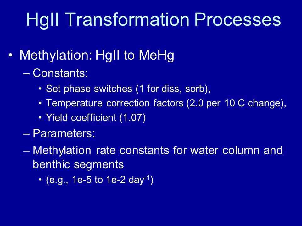 HgII Transformation Processes Methylation: HgII to MeHg –Constants: Set phase switches (1 for diss, sorb), Temperature correction factors (2.0 per 10