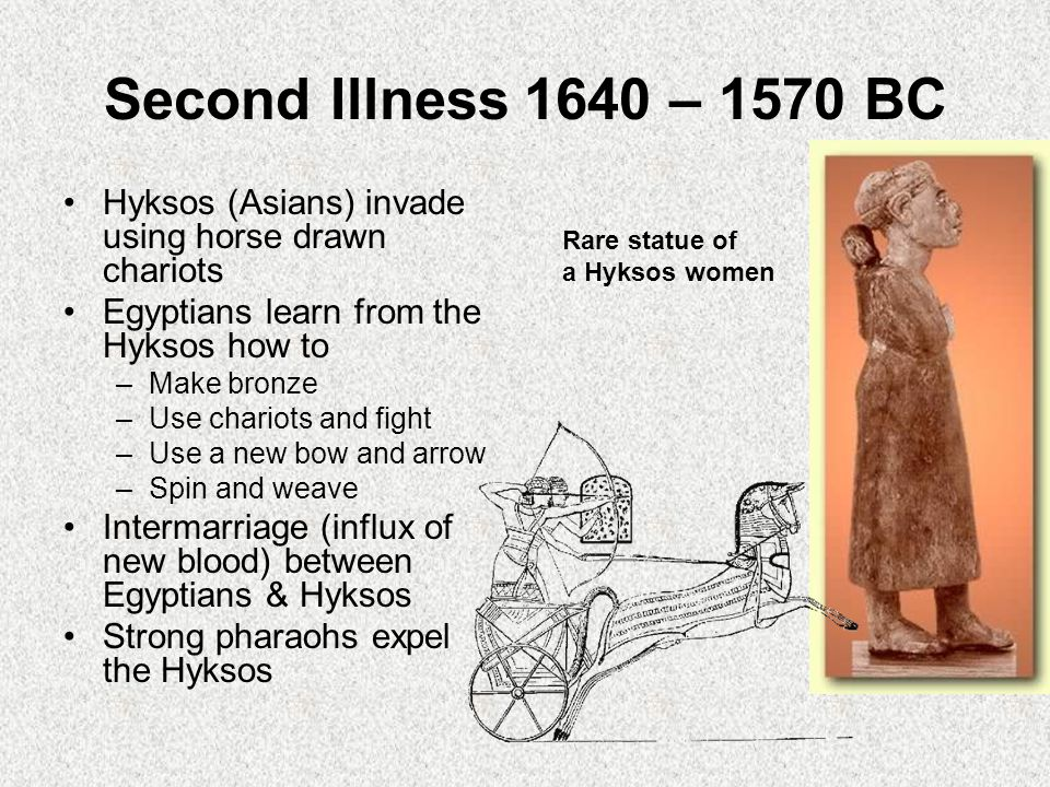 Second Illness1640 – 1570 BC Hyksos (Asians) invade using horse drawn chariots Egyptians learn from the Hyksos how to –Make bronze –Use chariots and fight –Use a new bow and arrow –Spin and weave Intermarriage (influx of new blood) between Egyptians & Hyksos Strong pharaohs expel the Hyksos Rare statue of a Hyksos women