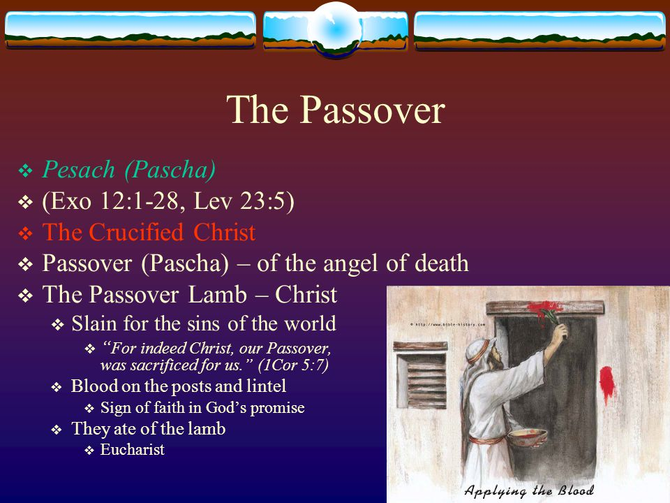 The Passover  Pesach (Pascha)  (Exo 12:1-28, Lev 23:5)  The Crucified Christ  Passover (Pascha) – of the angel of death  The Passover Lamb – Christ  Slain for the sins of the world  For indeed Christ, our Passover, was sacrificed for us. (1Cor 5:7)  Blood on the posts and lintel  Sign of faith in God's promise  They ate of the lamb  Eucharist