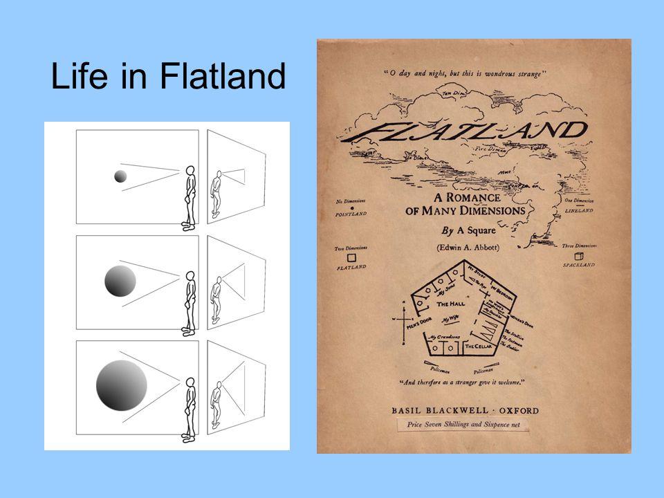 Life in Flatland