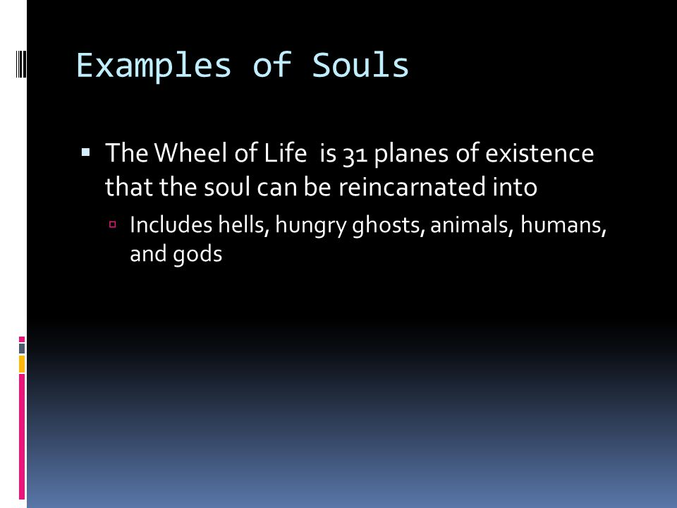 Examples of Souls  The Wheel of Life is 31 planes of existence that the soul can be reincarnated into  Includes hells, hungry ghosts, animals, humans, and gods