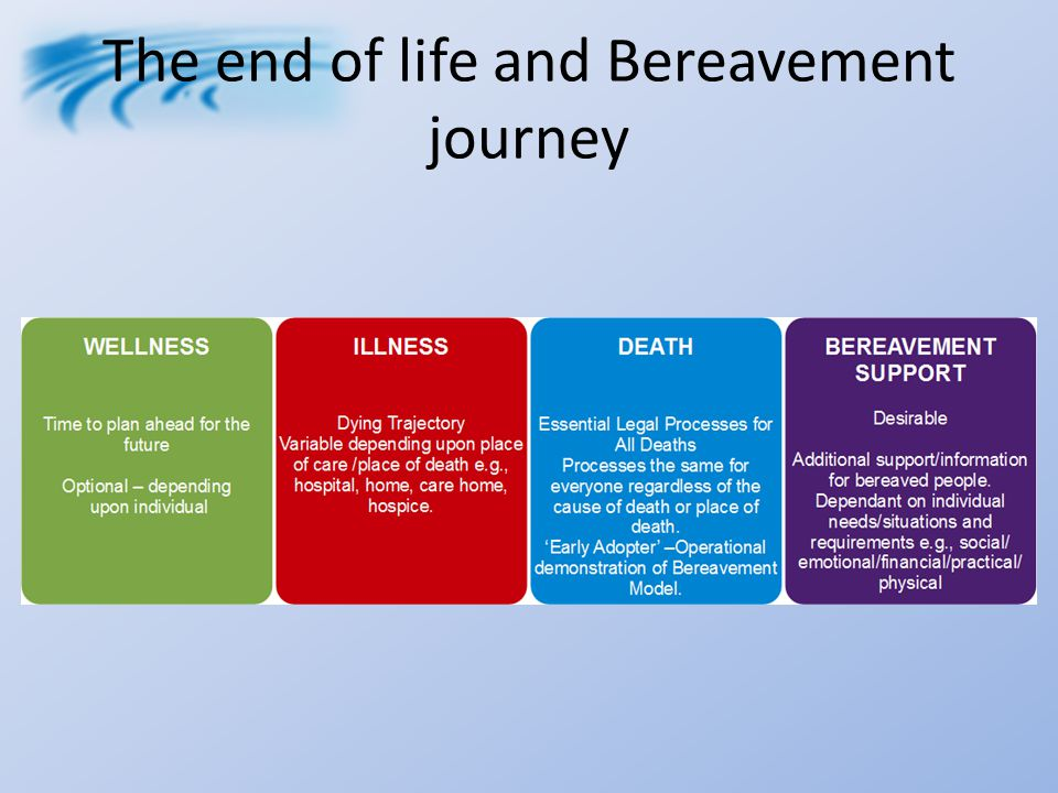 Improving the Process of Death Certification Ruth O'Leary Lead Nurse Bereavement Services