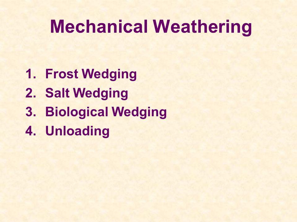 Mechanical Weathering 1.Frost Wedging 2.Salt Wedging 3.Biological Wedging 4.Unloading