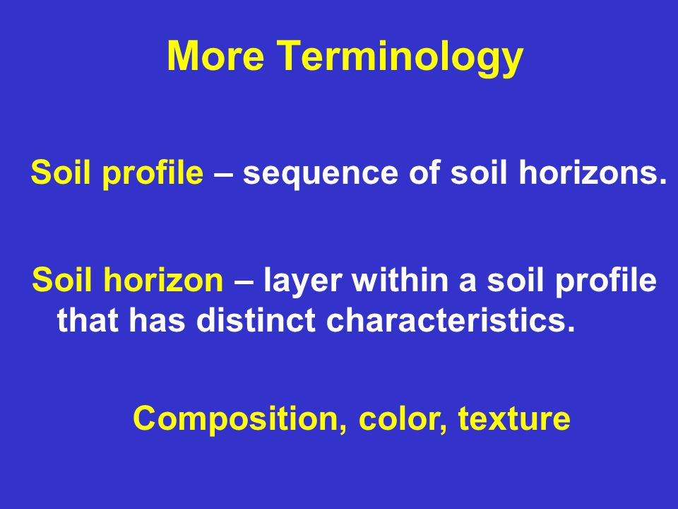 More Terminology Soil profile – sequence of soil horizons. Soil horizon – layer within a soil profile that has distinct characteristics. Composition,
