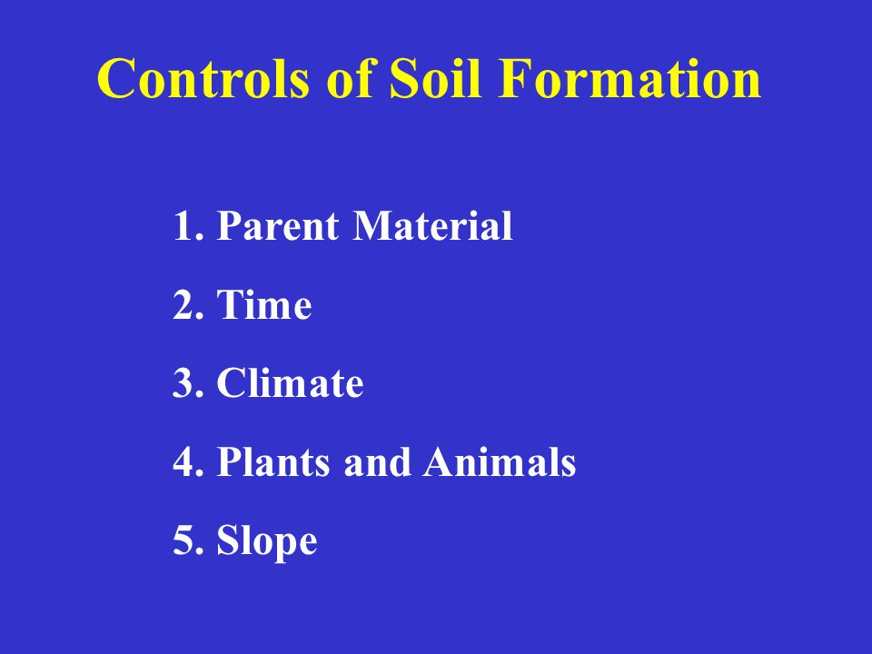 Controls of Soil Formation 1.Parent Material 2.Time 3.Climate 4.Plants and Animals 5.Slope