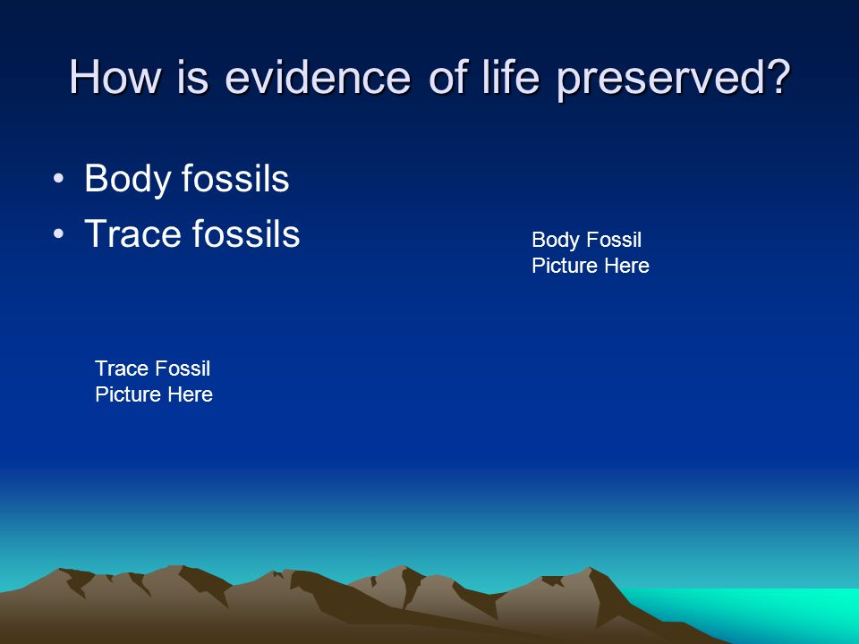 How is evidence of life preserved? Body fossils Trace fossils Trace Fossil Picture Here Body Fossil Picture Here