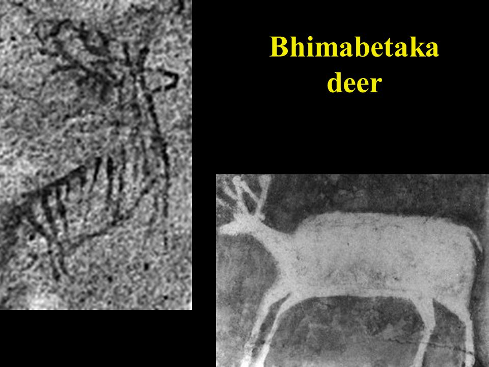 Bhimabetaka India  Bhimabetaka, is located 45 km to the south-east of Bhopal near a hill village called Bhiyanpur .