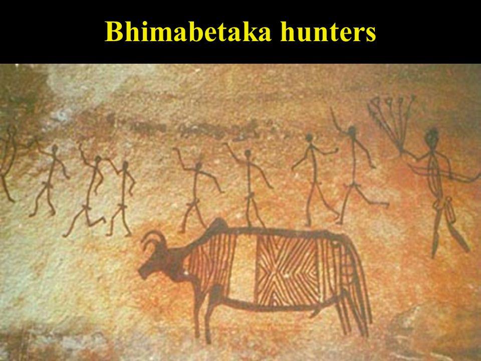 Bhimabetaka dog