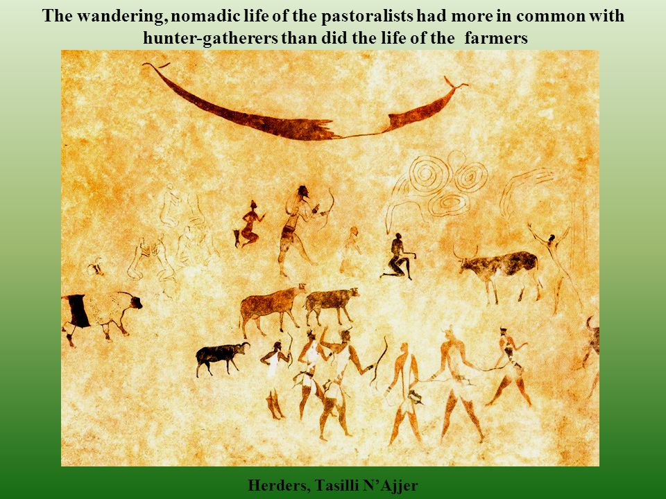 The Agricultural Revolution: Pastoralism Pastoralism, the herding of domesticated or partially domesticated animals emerged at the same time as agriculture did -- 10-12,000 years ago