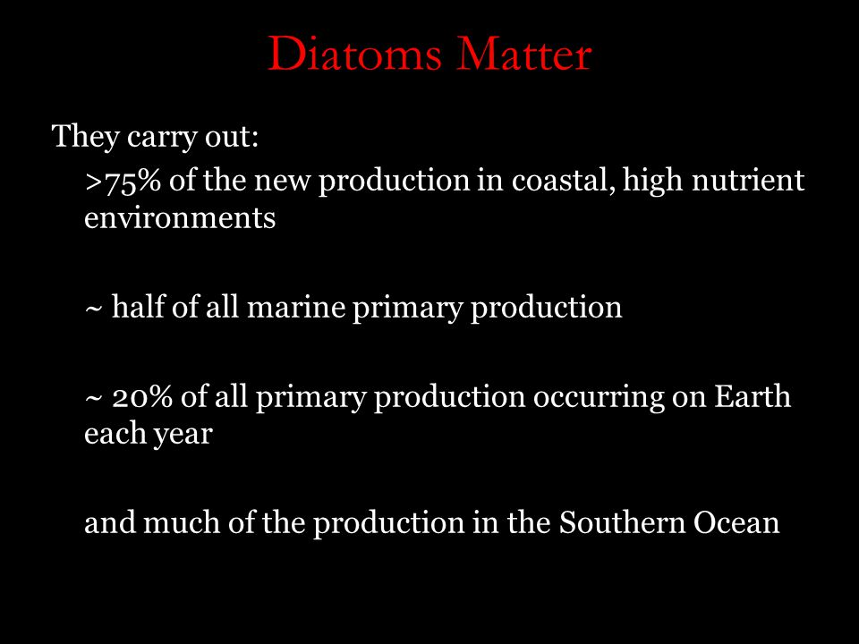 Diatoms Matter They carry out: >75% of the new production in coastal, high nutrient environments ~ half of all marine primary production ~ 20% of all primary production occurring on Earth each year and much of the production in the Southern Ocean