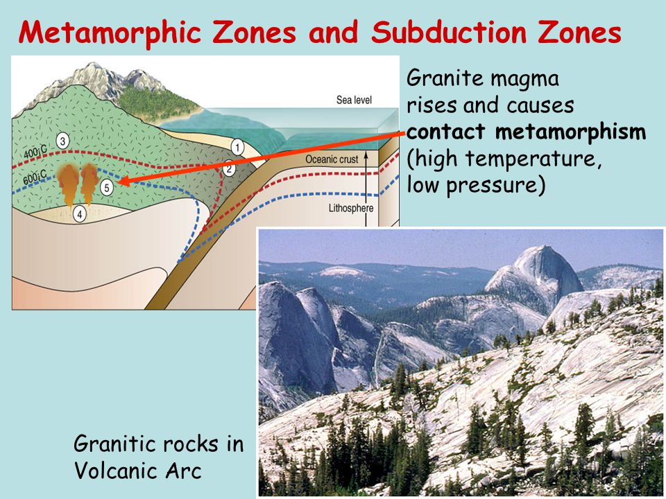 Granitic rocks in Volcanic Arc Granite magma rises and causes contact metamorphism (high temperature, low pressure) Metamorphic Zones and Subduction Z