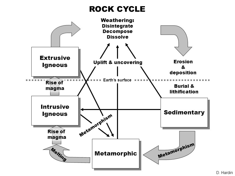 ROCK CYCLE Earth's surface Intrusive Igneous Intrusive Igneous Extrusive Igneous Extrusive Igneous Metamorphic Sedimentary Weathering: Disintegrate Decompose Dissolve Erosion & deposition Burial & lithification Metamorphism Uplift & uncovering Melting Rise of magma Rise of magma D.