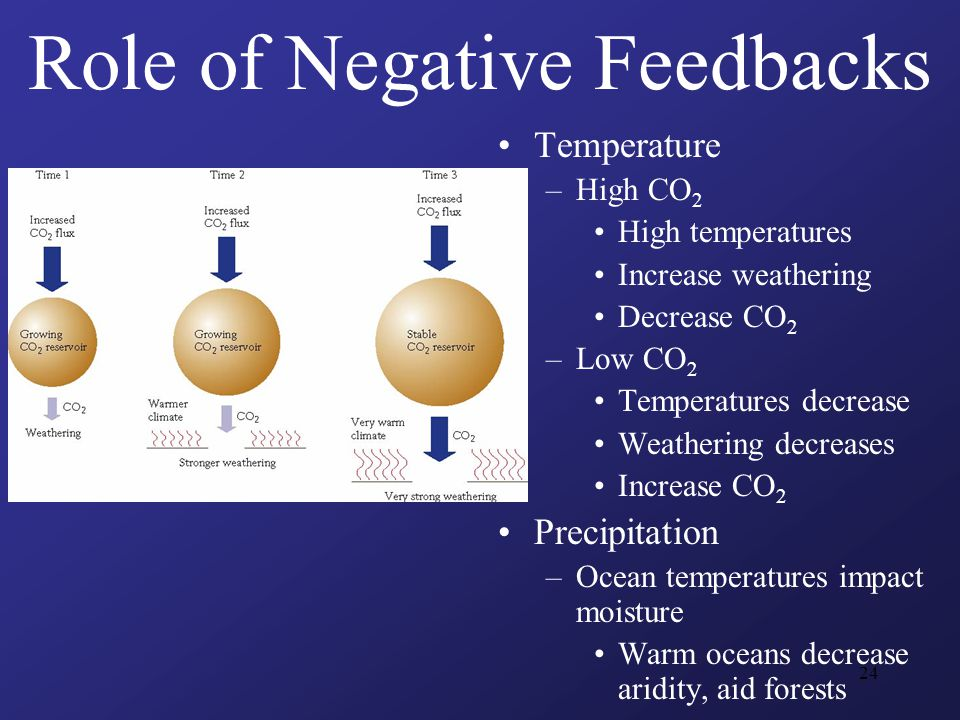 24 Role of Negative Feedbacks Temperature –High CO 2 High temperatures Increase weathering Decrease CO 2 –Low CO 2 Temperatures decrease Weathering decreases Increase CO 2 Precipitation –Ocean temperatures impact moisture Warm oceans decrease aridity, aid forests