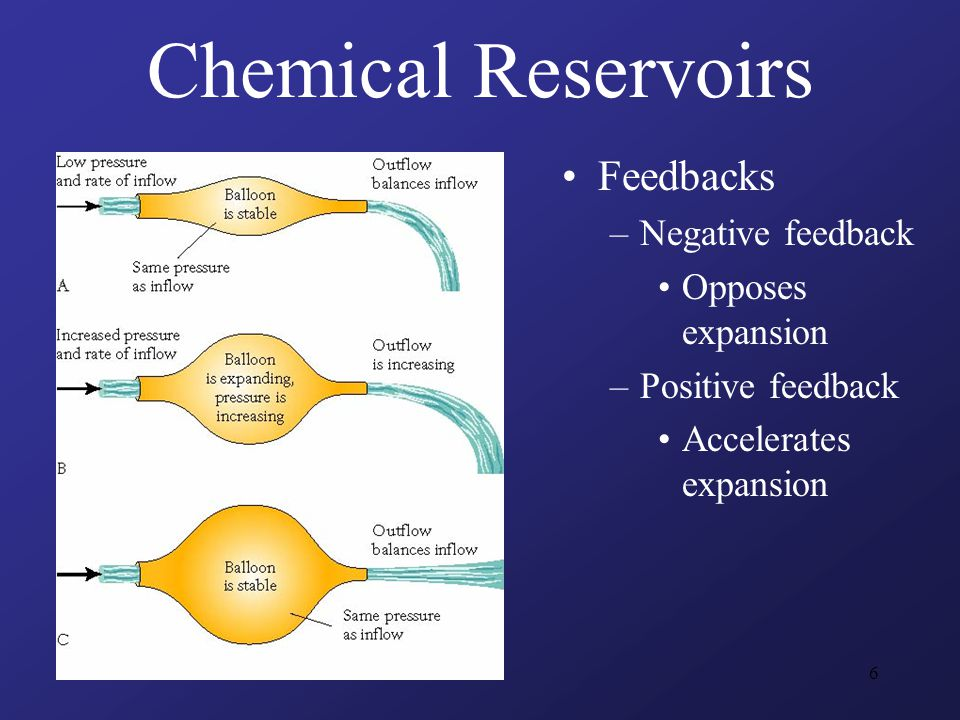 6 Feedbacks –Negative feedback Opposes expansion –Positive feedback Accelerates expansion Chemical Reservoirs