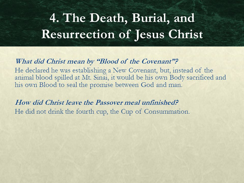 """What did Christ mean by """"Blood of the Covenant""""? He declared he was establishing a New Covenant, but, instead of the animal blood spilled at Mt. Sinai"""