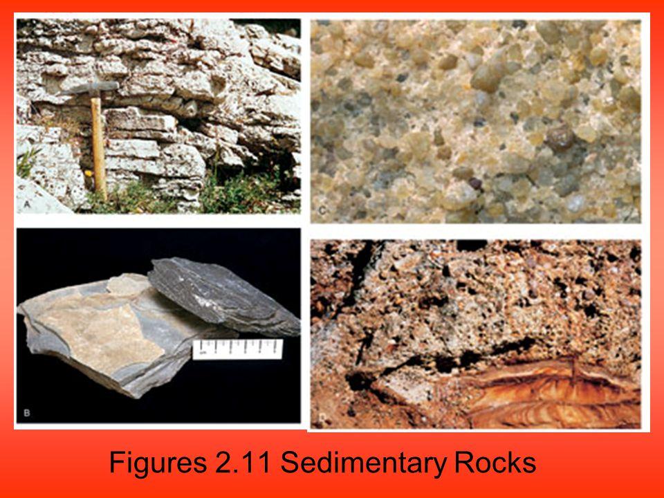 Figures 2.11 Sedimentary Rocks