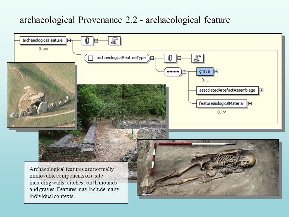 archaeological Provenance 2.2 - archaeological feature Archaeological features are normally immovable components of a site including walls, ditches, earth mounds and graves.
