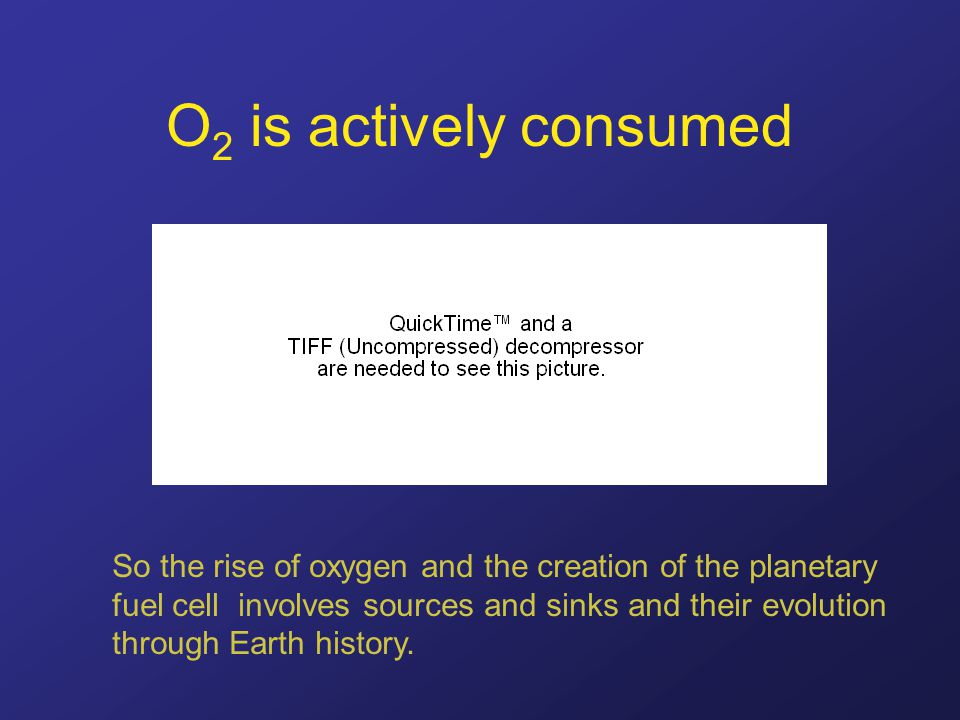 O 2 is actively consumed So the rise of oxygen and the creation of the planetary fuel cell involves sources and sinks and their evolution through Eart