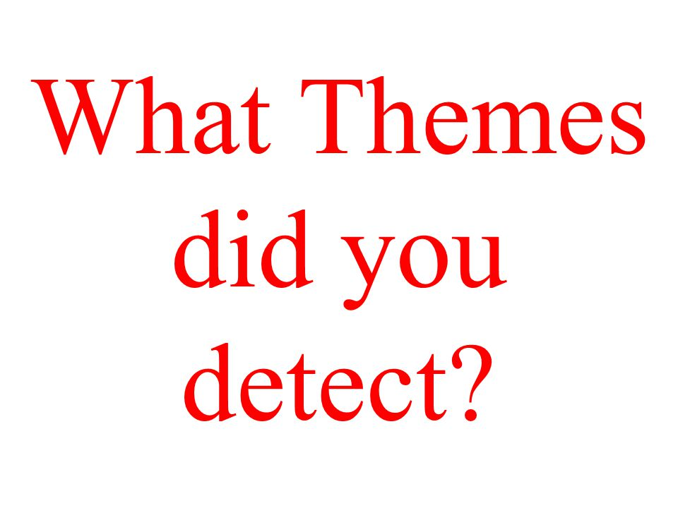 What Themes did you detect