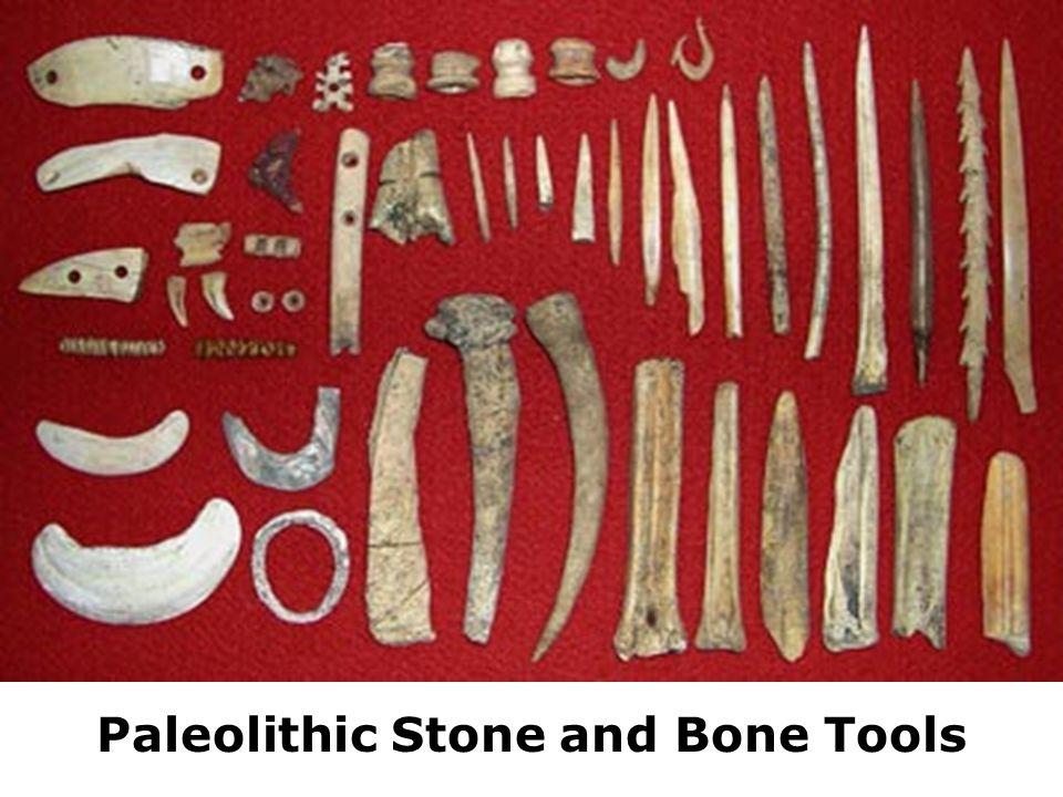 Paleolithic Needles