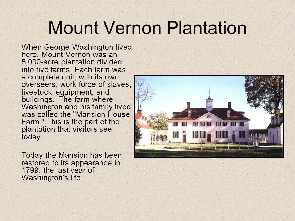 Mount Vernon Plantation When George Washington lived here, Mount Vernon was an 8,000-acre plantation divided into five farms.