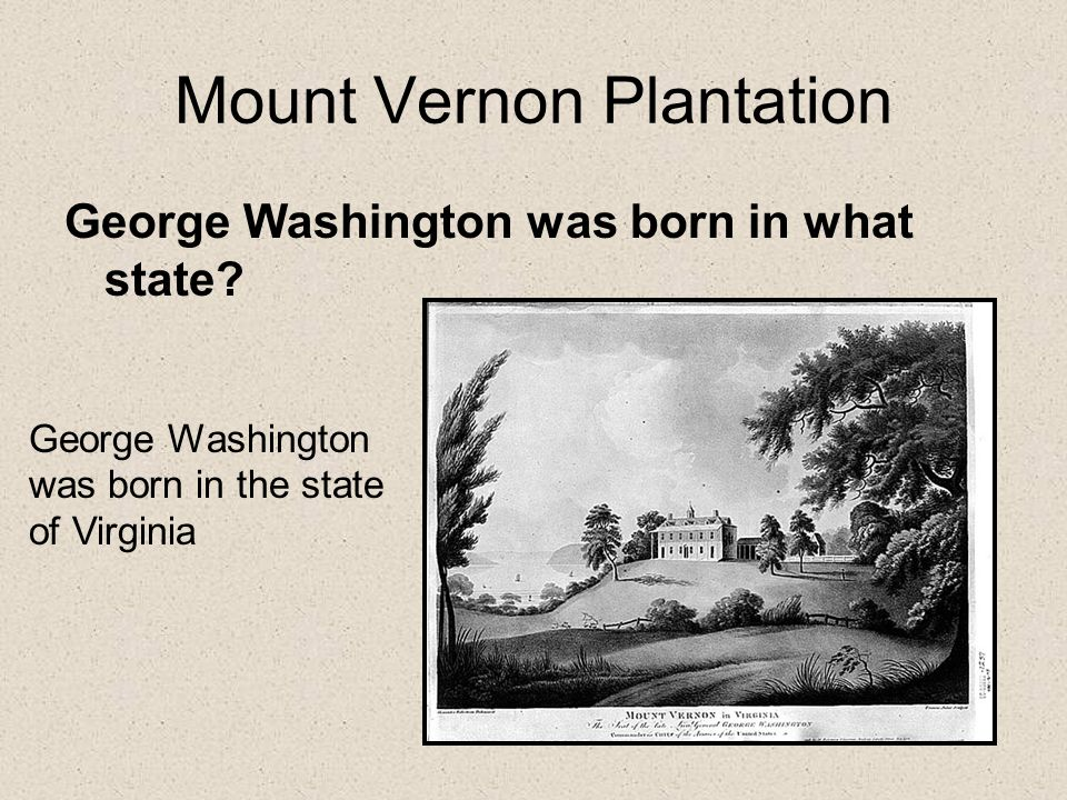 Mount Vernon Plantation George Washington was born in what state.