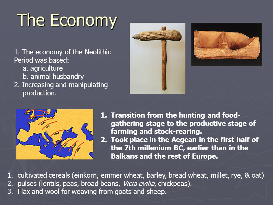 The Economy 1. The economy of the Neolithic Period was based: a. agriculture b. animal husbandry 2. Increasing and manipulating production. 1.Transiti