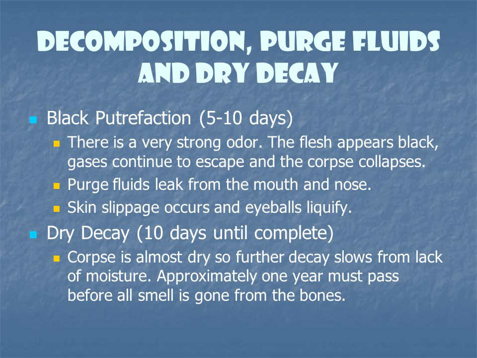 Decomposition, Purge Fluids and dry decay Black Putrefaction (5-10 days) There is a very strong odor. The flesh appears black, gases continue to escap