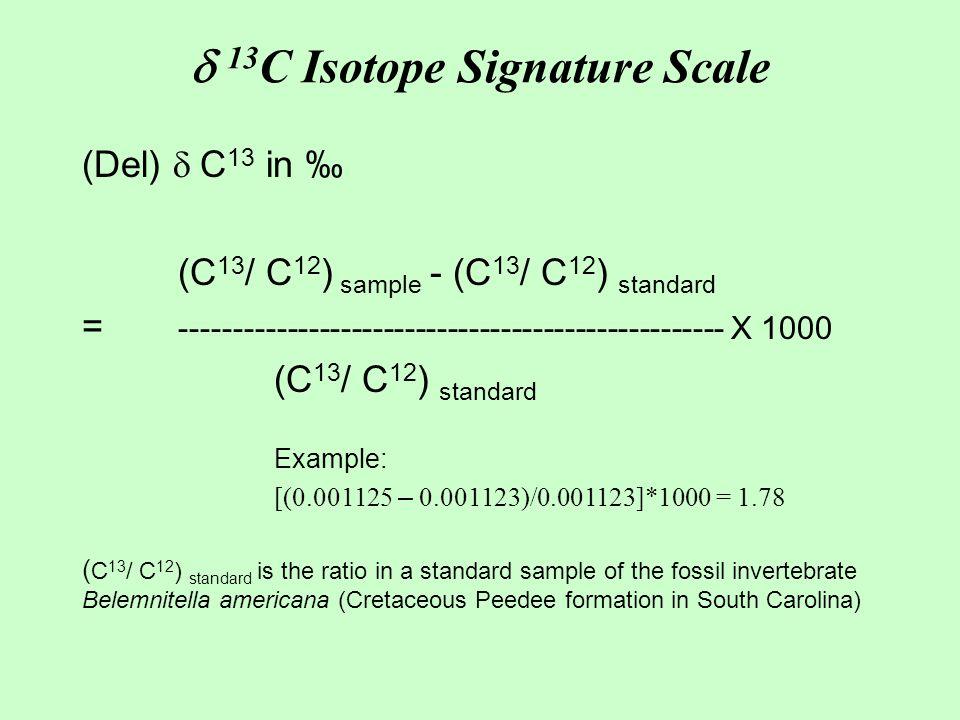  13 C Isotope Signature Scale (Del)  C 13 in ‰ (C 13 / C 12 ) sample - (C 13 / C 12 ) standard = --------------------------------------------------- X 1000 (C 13 / C 12 ) standard Example: [(0.001125 – 0.001123)/0.001123]*1000 = 1.78 ( C 13 / C 12 ) standard is the ratio in a standard sample of the fossil invertebrate Belemnitella americana (Cretaceous Peedee formation in South Carolina)