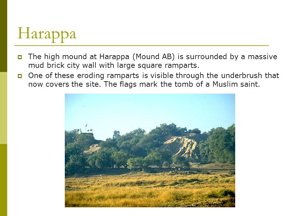 Harappa  The high mound at Harappa (Mound AB) is surrounded by a massive mud brick city wall with large square ramparts.