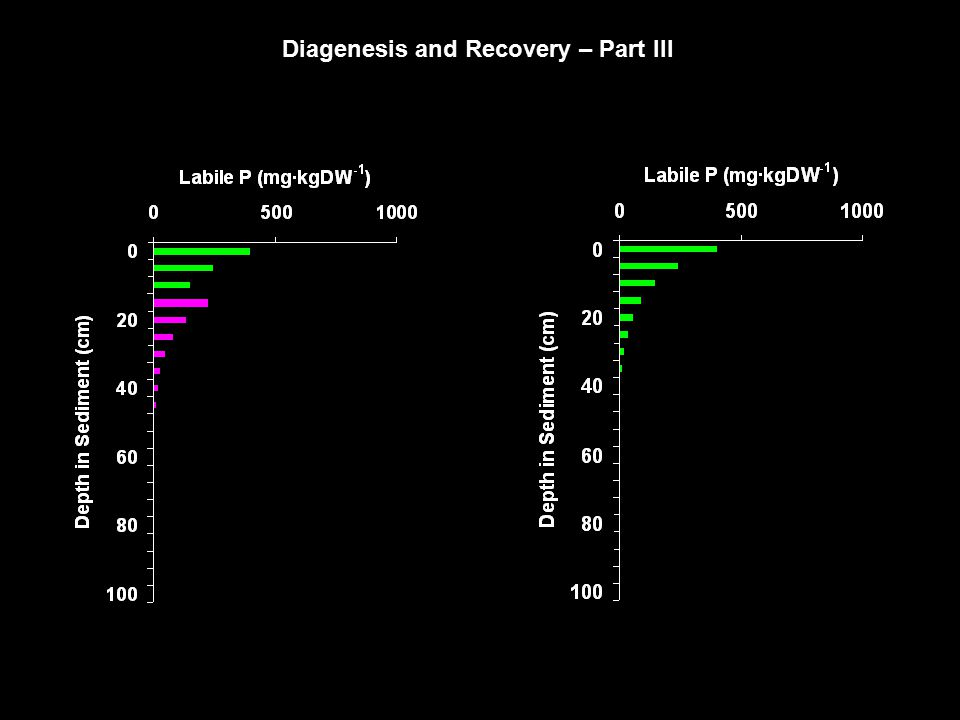 Diagenesis and Recovery – Part III