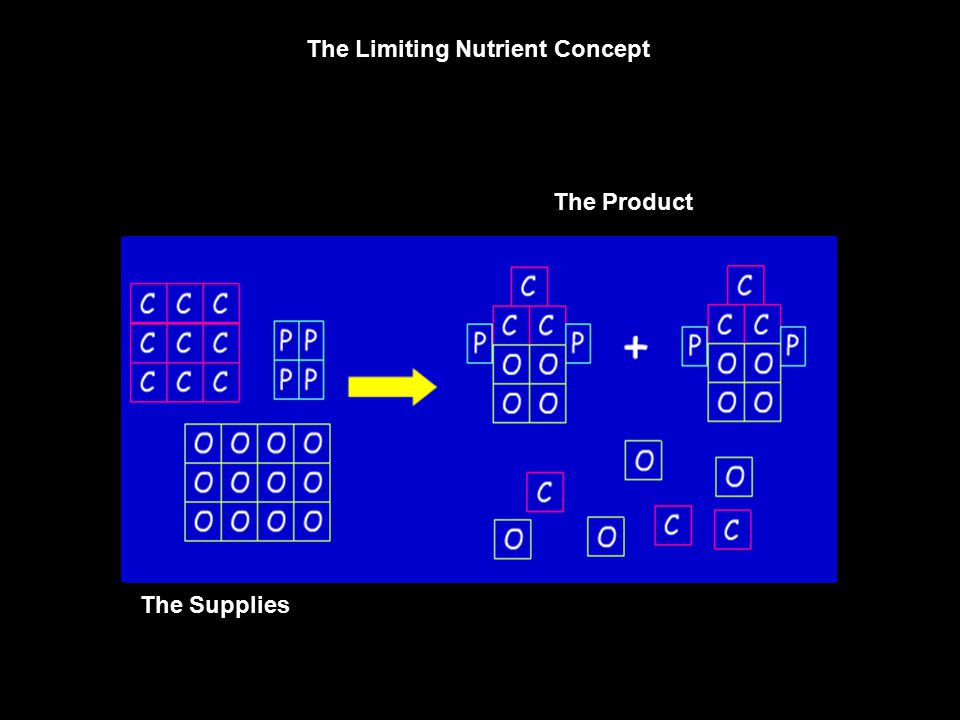 The Limiting Nutrient Concept The Supplies The Product