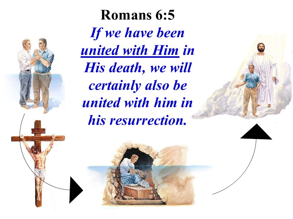 Romans 6:5 If we have been united with Him in His death, we will certainly also be united with him in his resurrection.