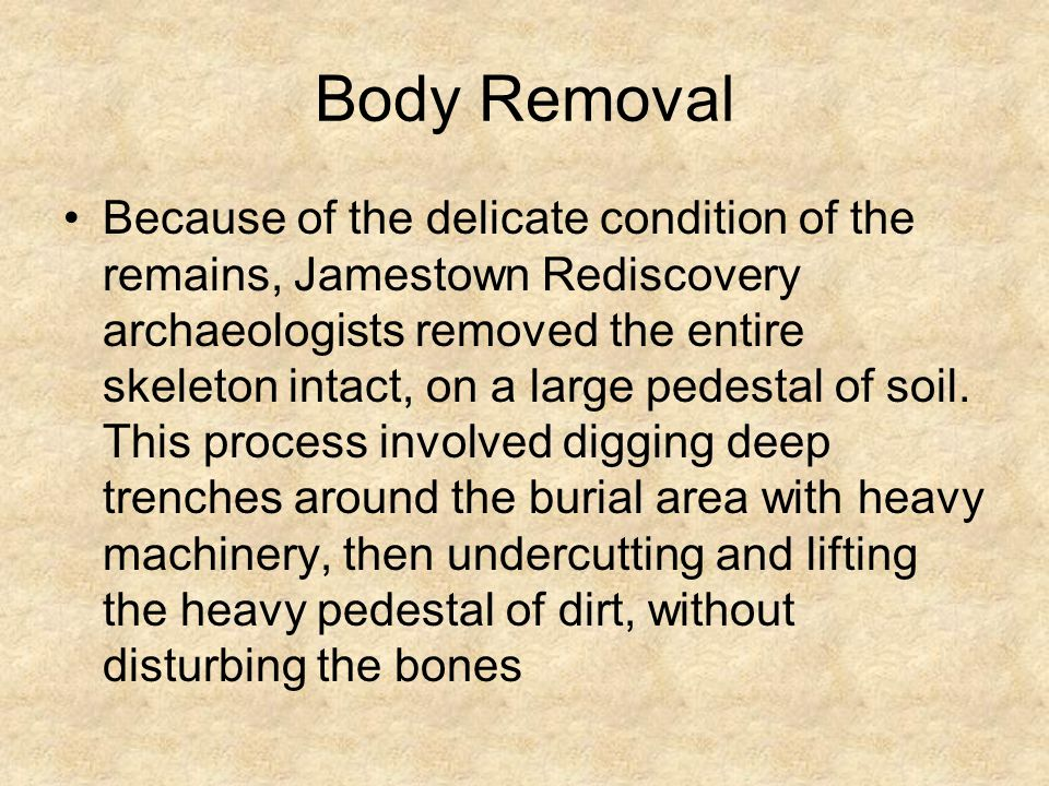 Body Removal Because of the delicate condition of the remains, Jamestown Rediscovery archaeologists removed the entire skeleton intact, on a large ped