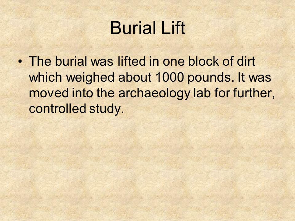 Burial Lift The burial was lifted in one block of dirt which weighed about 1000 pounds.