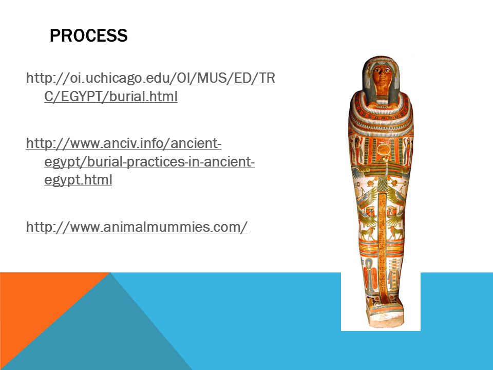 http://oi.uchicago.edu/OI/MUS/ED/TR C/EGYPT/burial.html http://www.anciv.info/ancient- egypt/burial-practices-in-ancient- egypt.html http://www.animalmummies.com/ PROCESS