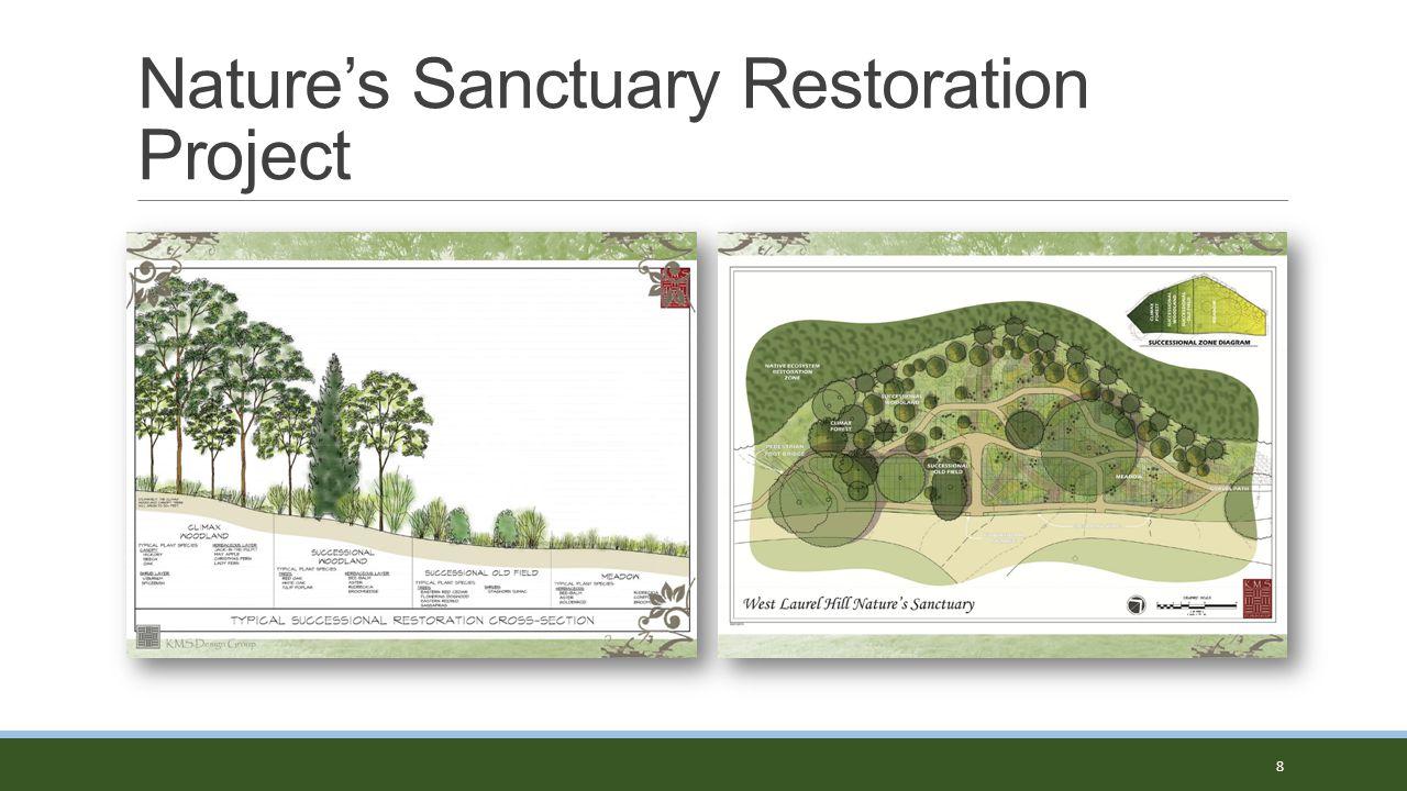 Nature's Sanctuary Restoration Project 8