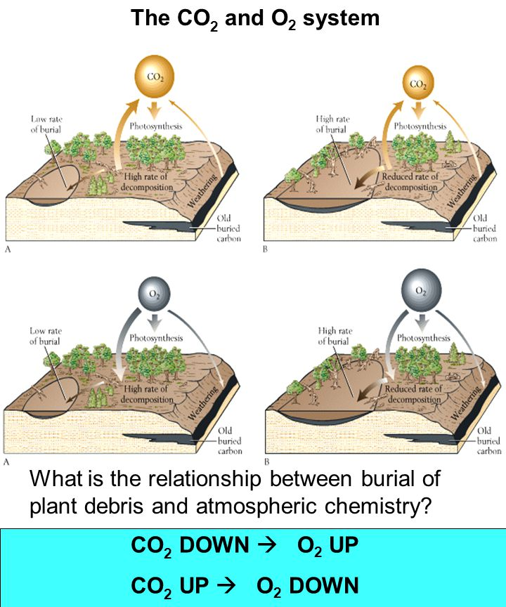 What is the relationship between burial of plant debris and atmospheric chemistry.