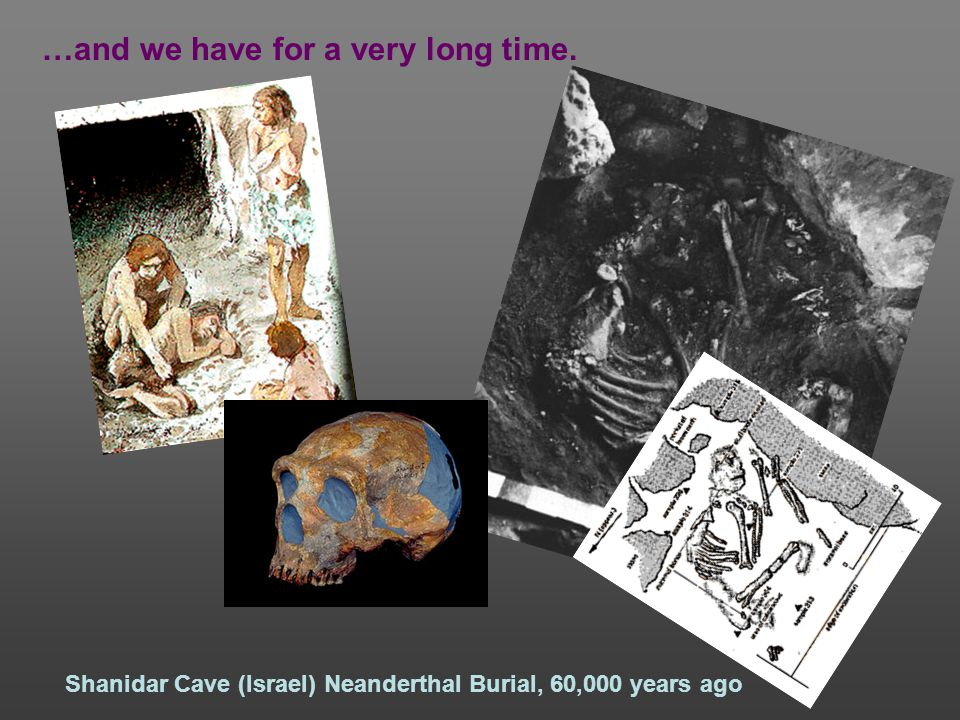 …and we have for a very long time. Shanidar Cave (Israel) Neanderthal Burial, 60,000 years ago