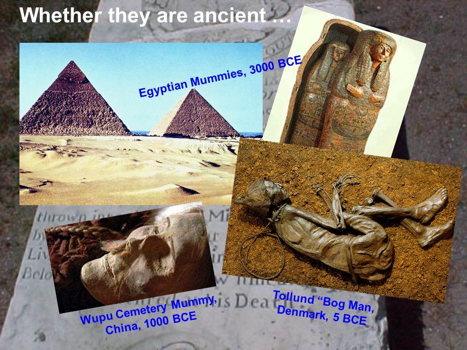 "Whether they are ancient … Tollund ""Bog Man, Denmark, 5 BCE Wupu Cemetery Mummy, China, 1000 BCE Egyptian Mummies, 3000 BCE"